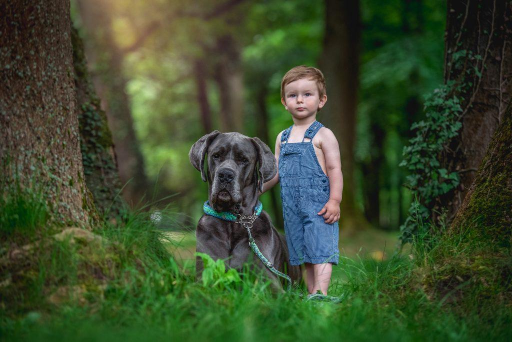 chlapec a jeho pes, nemecká doga, fotenie detské, pes