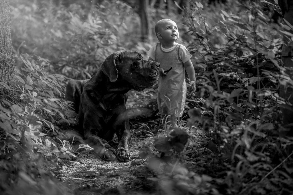 fotograf Žilina, pes, chlapček